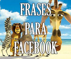 frases de estados para facebook