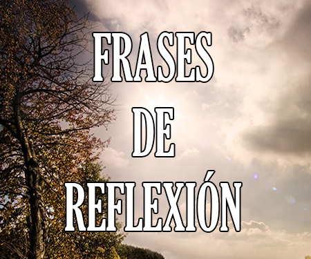 Frases De Reflexión Cortas Y Bonitas De Amor Y De La Vida