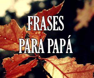 frases para papa