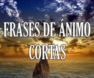 Frases de Animo Cortas
