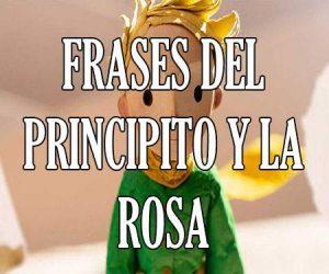 Frases del Principito y la Rosa