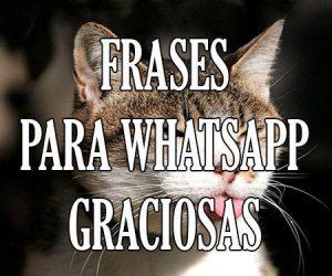 frases para whatsapp graciosas chistosas
