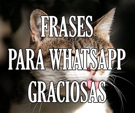 Frases Estados Para Whatsapp Chistosos Graciosos Y De Risa Cortos