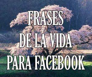frases sobre la vida para facebook