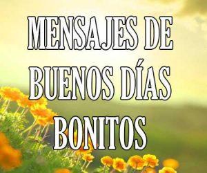 Mensajes de Buenos Bonitos