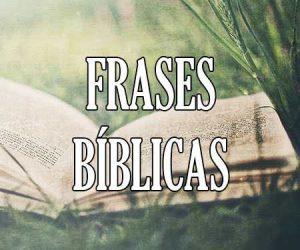 citas y frases biblicas