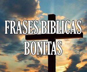 Frases Bíblicas Bonitas