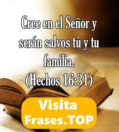 Versículos Citas Frases Biblícas De La Biblia De Amor