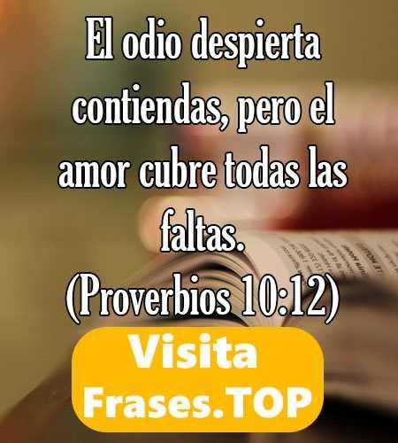 Versículos Citas Frases Biblícas De La Biblia De Amor Cortas
