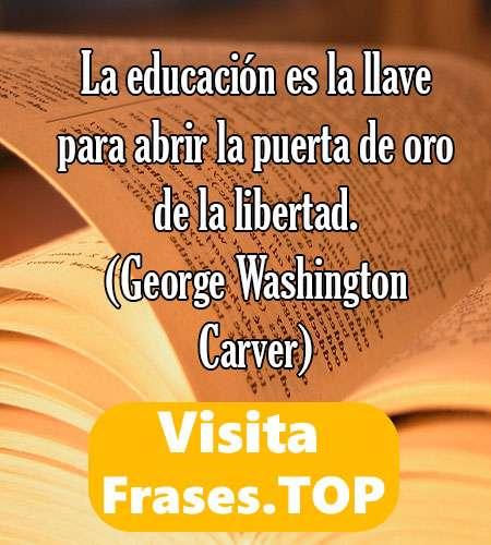 Frases De Educacion Educativas Motivadoras Para