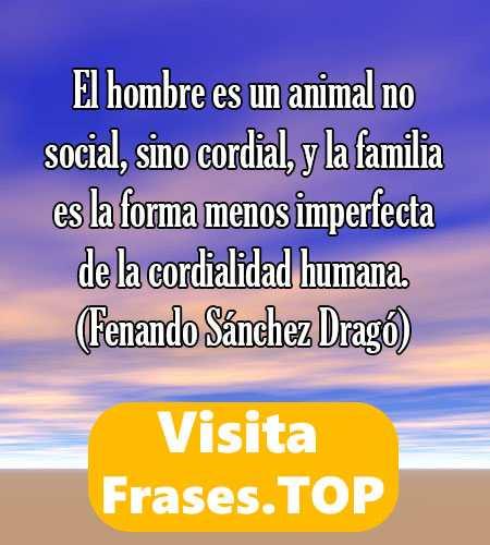 Frases De Familia Feliz Y Unida De Amor Cortas Y Bonitas 2019