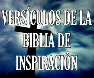 Versículos de La Biblia de Inspiración