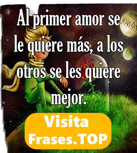 Frases Del Principito Y La Rosa Y El Zorro Y De Amor