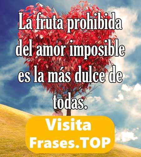 Frases De Amor Imposible Prohibido Y Secreto Cortas Para Dedicar