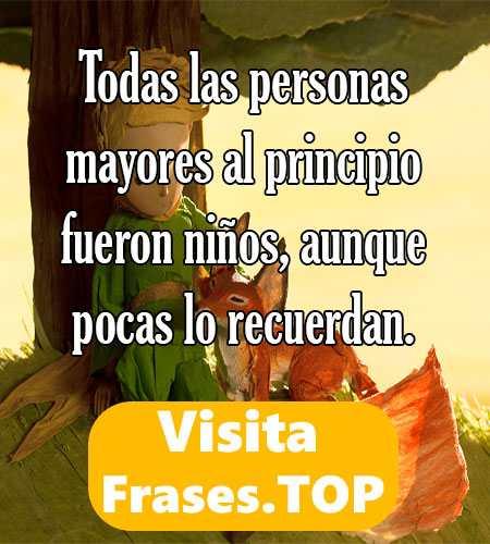 Frases Del Principito Y La Rosa Y El Zorro De Amor