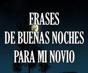 Frases De Buenas Noches Amor Feliz Bonitas Para Mi Novio O Princesa