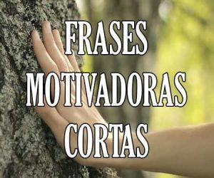 Frases Cortas Motivadoras