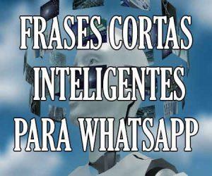 Frases Cortas Inteligentes para WhatsApp