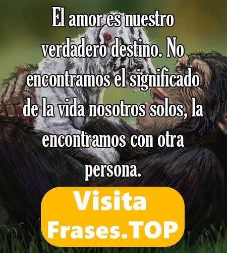 Mensajes Y Frases De Amistad Cortas Bonitas Y De Amor 2018