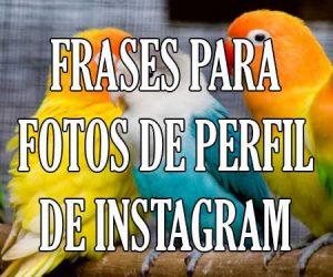 Frases para Fotos de Perfil de Instagram
