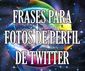 Frases para Fotos de Twitter