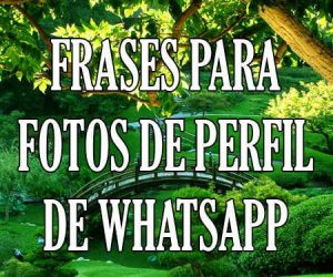 Frases para Fotos de Perfil de WhatsApp