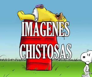 Imagenes Chistosas