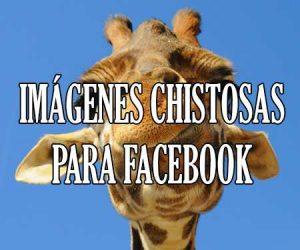 Imagenes chistosas para facebook