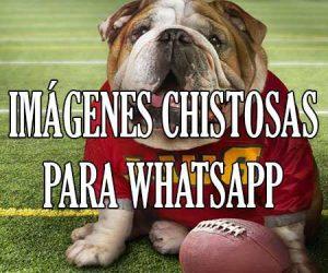 Imagenes Chistosas para Whatsapp