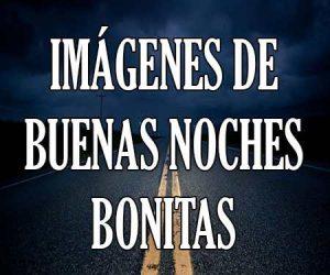 Imágenes De Buenas Noches Bonitas De Amor Tarjetas Gifs