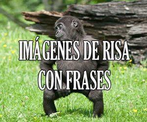 Imagenes de Risa con Frases