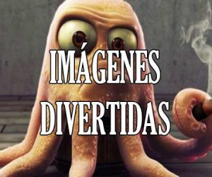 Imagenes Divertidas