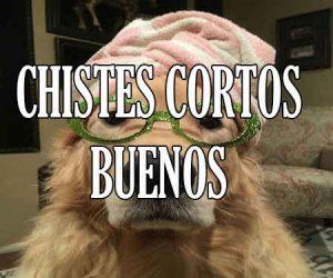 Chistes Cortos Buenos