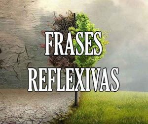 Frases Reflexivas