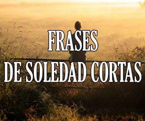 Frases de Soledad Cortas