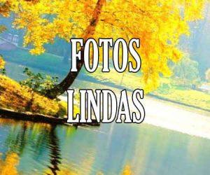 Fotos Lindas