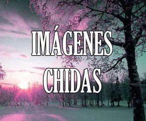 Imágenes Chidas