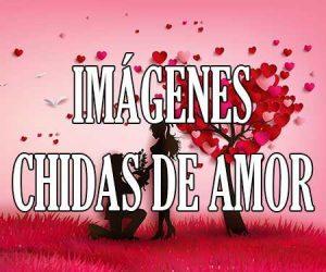 Imagenes Chidas de Amor