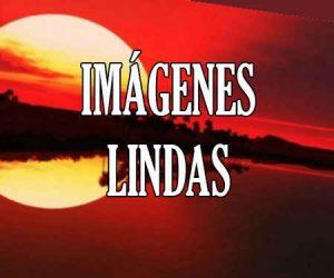 Imagenes Lindas