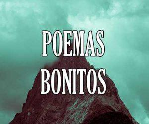 Poemas Bonitos