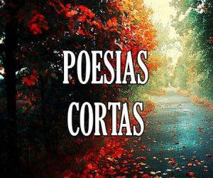 Poesías Cortas