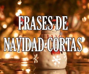 Frases de Navidad Cortas