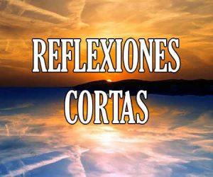 Frases De Reflexión Cortas Y Reflexiones Bonitas De Amor