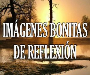 Imagenes Bonitas de Reflexion