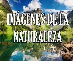 Imagenes de la Naturaleza