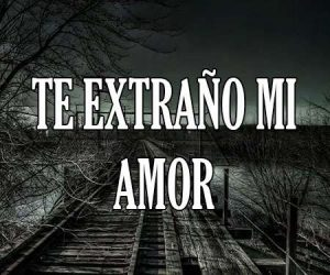 Te Extraño Mi Amor
