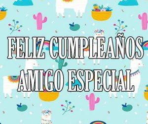 Feliz Cumpleaños Amigo Especial
