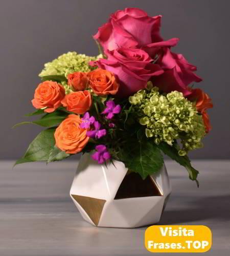 Fotos Imágenes De Flores Hermosas Bonitas Con Frases