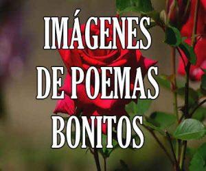 Imagenes de Poemas Bonitos