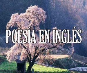 Poesia en Ingles